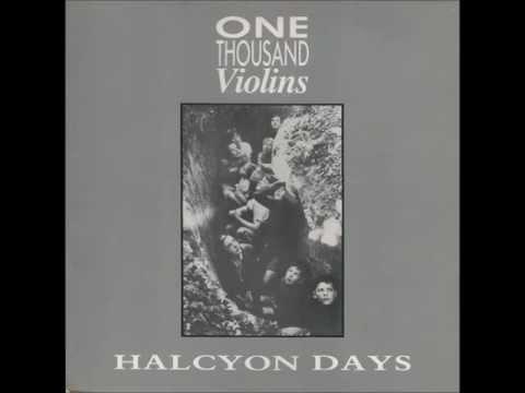 One Thousand Violins  Like One Thousand Violins