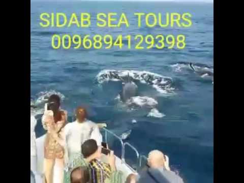 Oman marine tourism