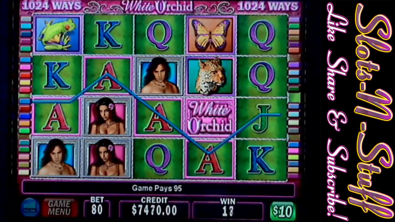 White orchid live slot play just for fun! Youtube.