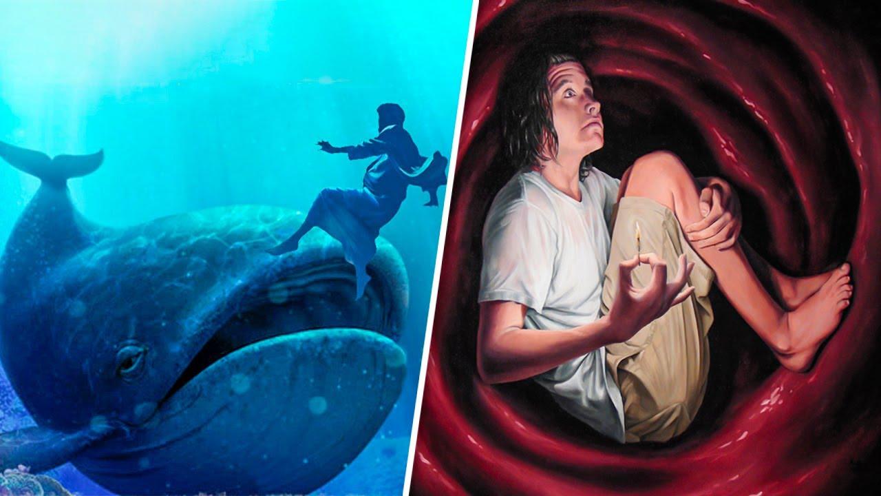 ВОЗМОЖНО ЛИ БЫТЬ ПРОГЛОЧЕННЫМ КИТОМ И ОСТАТЬСЯ В ЖИВЫХ? ЧАСТЬ 2