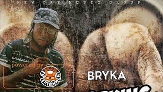 Bryka - Working Hard - April 2017