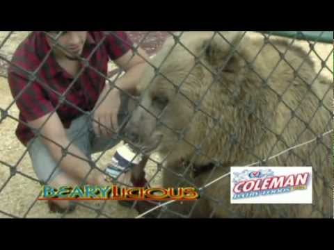 """Coleman Dairy at the Arkansas State Fair """"Big Bear Attraction""""10 17 12"""