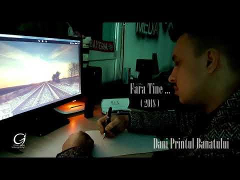 Dani Printul Banatului - FARA TINE [ oficial audio ] 2018