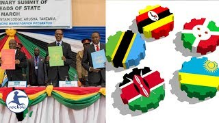 Gambar cover Eastern African Countries Also Have Plans for a New Single Currency