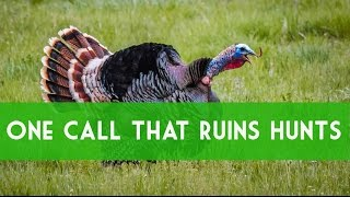 Video Turkey Calling: Greatest Mistake Of Calling Hens. How To Call Turkeys. download MP3, 3GP, MP4, WEBM, AVI, FLV Agustus 2018
