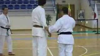 Kagawa-sensei demonstrating mawashigeri thumbnail