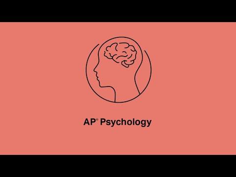 AP Psychology: Timed AP Exam Practice #2