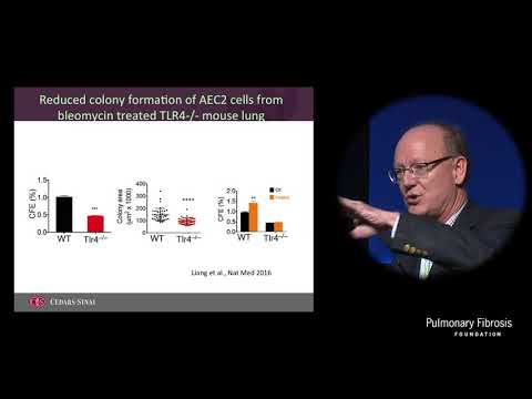 Mechanism of Alveolar Epithelial Cell Renewal: Impact on ILD | Paul Noble, MD