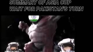 SUMMARY OF ASIA CUP WAIT FOR PAKISTAN'S TURN
