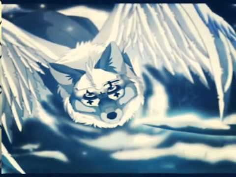 Anime wolf- love the way you lie - YouTube