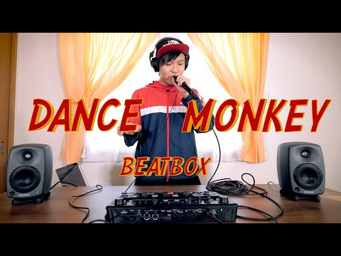 DANCE MONKEY BEATBOX / TONES AND I cover