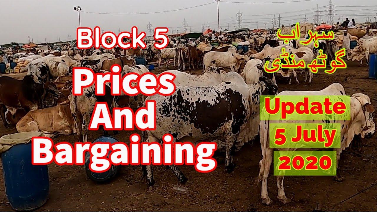 Prices With Bargaining - Sohrab Goth Maweshi Mandi