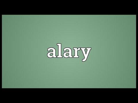 Header of alary