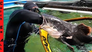 SAVING CATFISH that SWALLOWED PVC PIPE! **My Arm into this FISH STOMACH!**