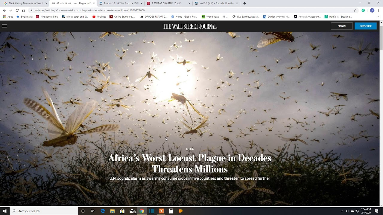 Locust Plague In Africa. Prophecy!! - YouTube