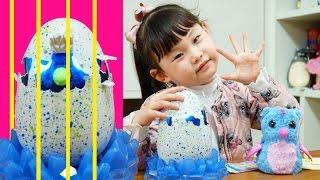 [다큐5일]라임의 해치멀스 알 부화시키기❤︎ 서프라이즈에그 장난감 놀이 LimeTube & Toy 라임튜브