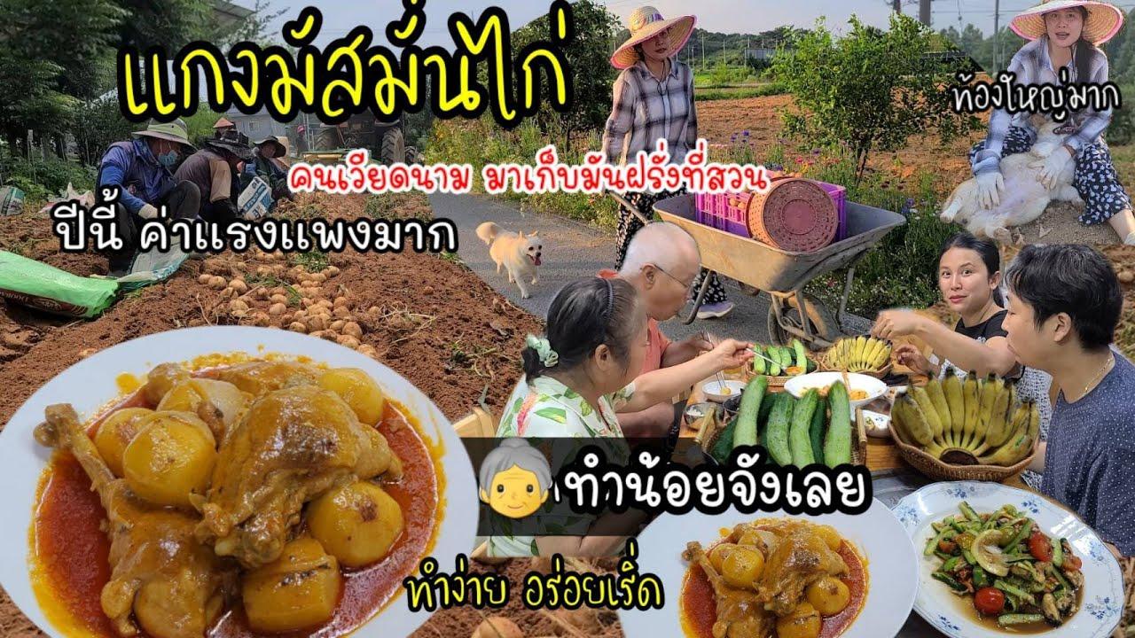 EP.537 เเกงมัสมั่นไก่ สูตรทำง่ายเเต่อร่อยเริ่ดในปฐพี คนเวียดนามมาเก็บมันฝรั่งที่สวน ค่าเเรงเเพงมาก