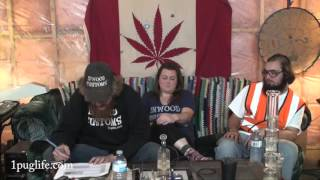 THC episode-579 on the hashes