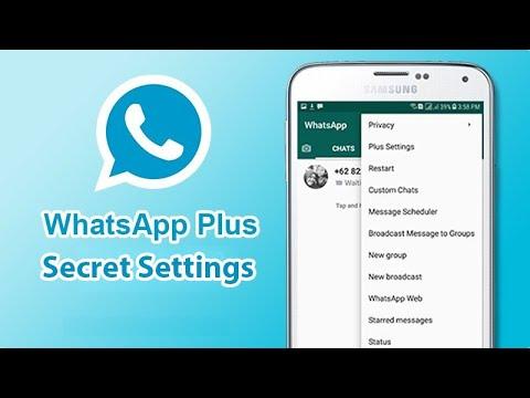 Whatsapp Plus Hidden Settings By Information Ocean