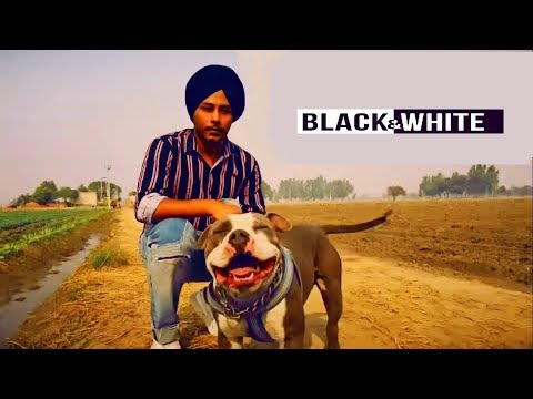 Black & White | Harinder Samra | Dreamboy | Ap Gagan Gill | Full Music Video | New Punjabi song 2018