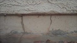 A Home in Maricopa Arizona with Termites