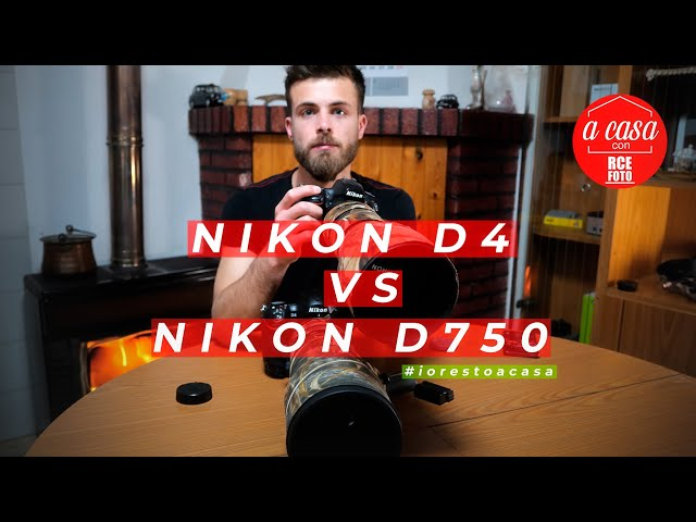 Nikon D4 vs Nikon D750 | lowlight focus, wildilife photograpy