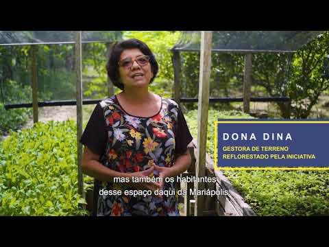 Sistema Miyawaki de Restauração de Ecossistemas na Amazônia