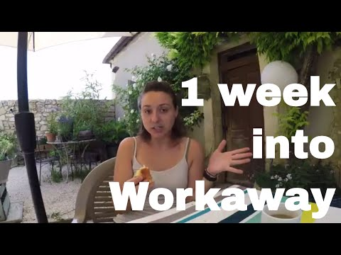 What my Workaway Experience is so Far -- A Little Chat  // 021