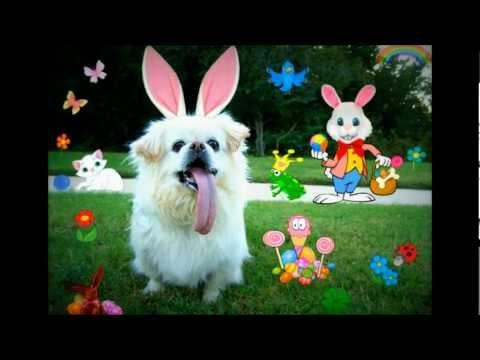Puggy sings