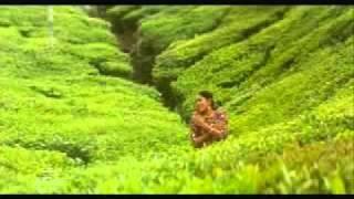 Margazhi Poove May Madham Tamil Melody Song