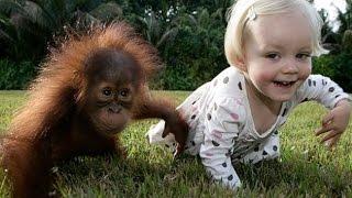 Дети и животные - смотреть всем!!!