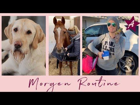 Meine Morgen Routine I mit Pferden, Hund und Freund I Charlies Ernährung