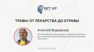 Алексей Водовозов — Травы: от лекарства до отравы | SetUp@МИСиС