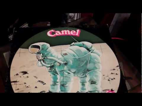 Camel. Aristillus