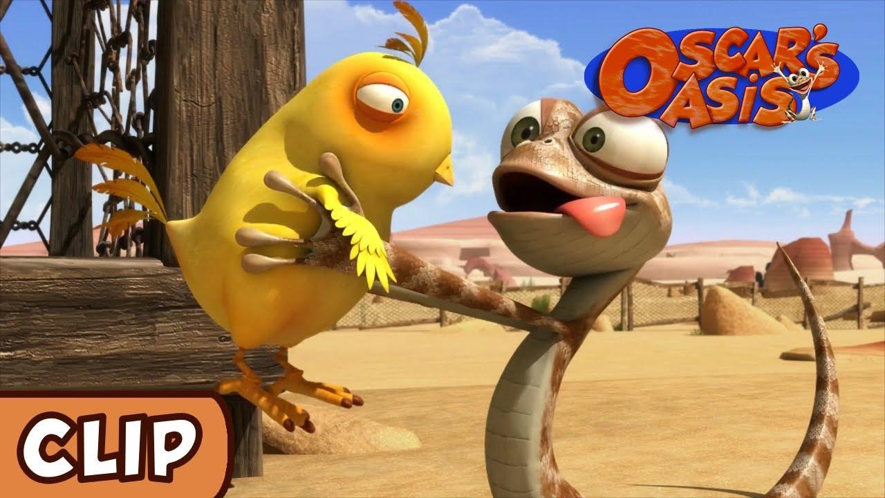 Oscar U0026 39 S Oasis - Chicken Supper