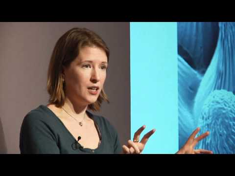 The secret language of flowers | Heather Whitney | TEDxSalford