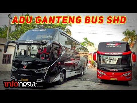 ADU GANTENG! 10 Varian Bus SHD Double Glass di Indonesia