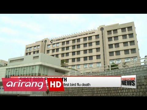 Hong Kong records winter's first bird flu death