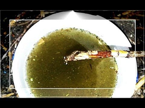 Заказывайте аквариумы в интернет-магазине рыбки. Com. Ua ✓ большой. Купить. Tetra cascade globe аквариум для петушка или золотой рыбки, 6,8 л.