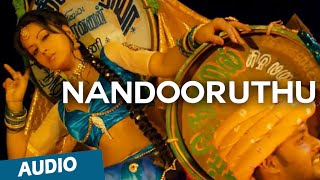 Nandooruthu Official Full Song (Audio) | Nedunchalai