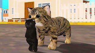 СИМУЛЯТОР Маленького КОТЕНКА #3 Беременная кошка родила кошечку развлекательное видео для детей