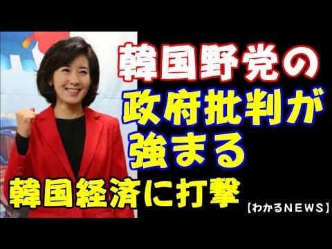 【韓国崩壊】韓国最大野党幹部が政府批判 日本を追い詰めれば、韓国経済は大打撃・・・文大統領どうする【わかる!NEWS】I want to know