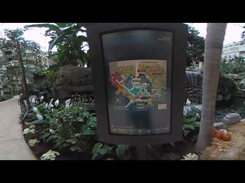 Gaylord Palms Resort & Convention Center 360 Tour Part 2