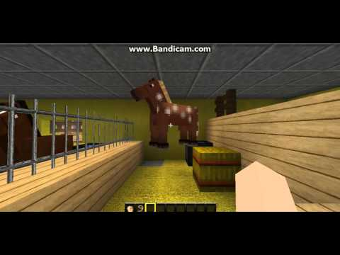 Minecraft- We Need Names For These Horses