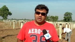Vasupujya Dragon Fruit Farm INDIA 01