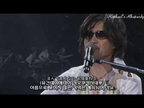 X JAPAN (X) - Say Anything LIVE 2008 (Korean, Japanese Sub)