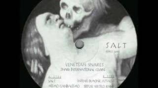 Venetian Snares - Salt