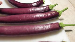 How To Tell Wнen Eggplants Are Ready For Picking