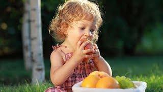 Папа-блог: можно ли давать ягоды своему ребенку?