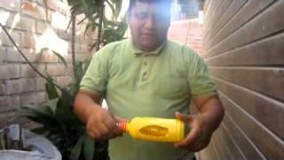 Control de plagas: Atrapa insectos en bo...